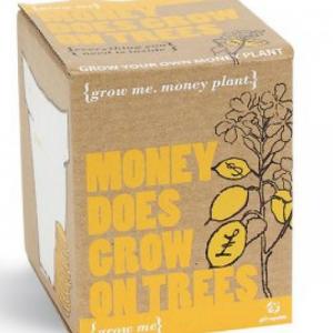 DIY. El dinero sí crece en los árboles