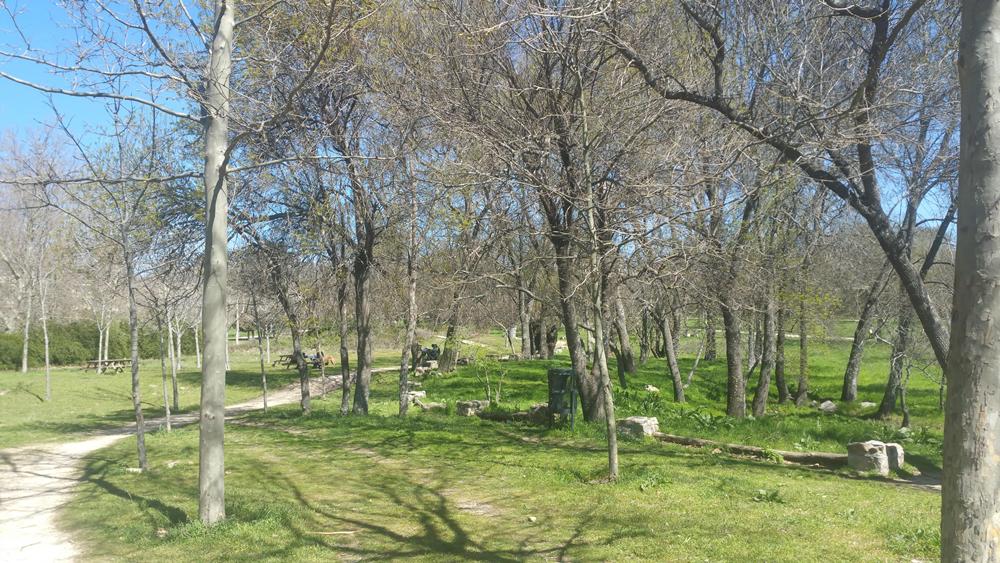 Centro de la naturaleza insect park san lorenzo de el for Centros de jardineria en madrid