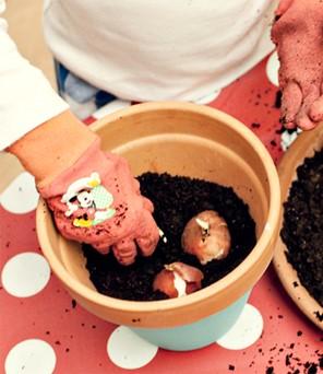 Niño plantando bulbos