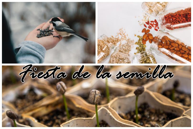 Fiesta de la semilla_J_Canna_2019